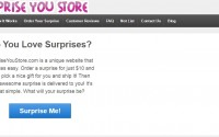 For just $10 SurpriseYouStore.com Will Send a Surprise Gift to You In the Mail